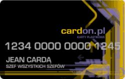 karty plastikowe z numeracja